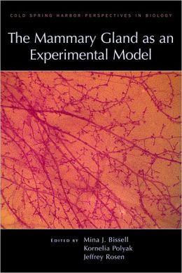 The Mammary Gland as an Experimental Model