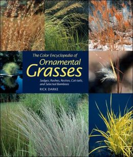 Color Encyclopedia of Ornamental Grasses: Sedges, Rushes, Restios, CatTails and Selected Bamboos