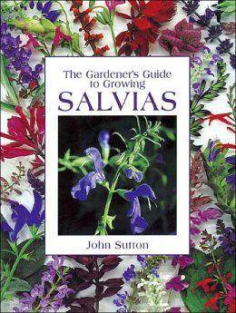 Gardener's Guide to Growing Salvias