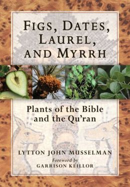 Figs, Dates, Laurel, and Myrrh: Plants of the Bible and the Qu'ran