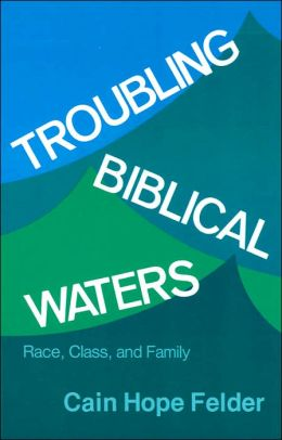 Troubling Biblical Waters: Race, Class, and Family (Bishop Henry McNeal Turner Studies in North American Black Religion Series, Vol. 3)