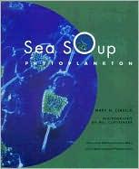 Sea Soup: Phytoplankton