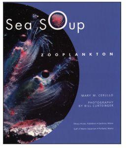 Sea Soup: Zooplankton