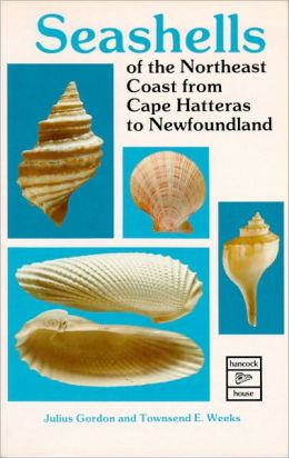Seashells of the Northeast Coast from Cape Hatteras to Newfoundland