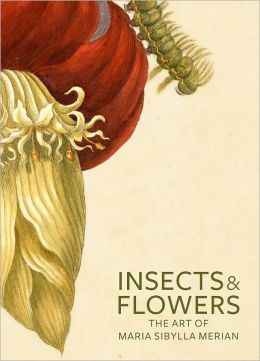 Insects and Flowers: The Art of Maria