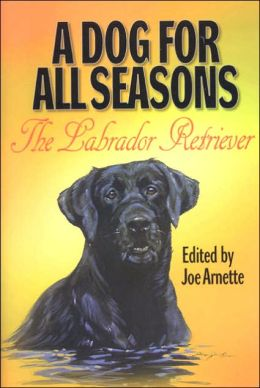 Dog for All Seasons: A Tribute to the Labrador Retriever