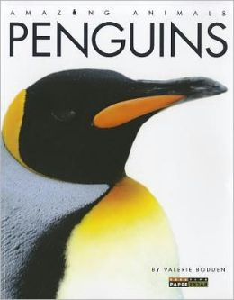 Penguins (Amazing Animals Series)