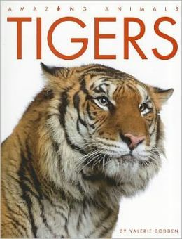 Tigers (Amazing Animals Series)