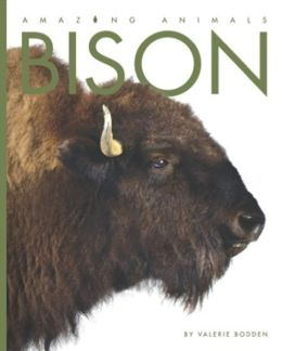 Bison (Amazing Animals Series)