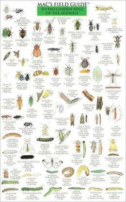 Mac's Field Guide to Bad Garden Bugs of the Midwest