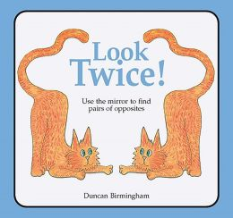 Look Twice: Use the Mirror to Find the Pairs of Opposites