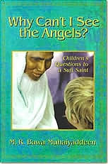 Why Can't I See the Angels?: Children's Questions to a Sufi Saint