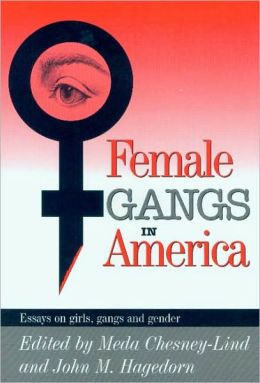 gang violence 2 essay Issues term papers (paper 5348) on gang violence: gangs are a violent reality  that  2 the nationality of the membership became largely non-white (though.