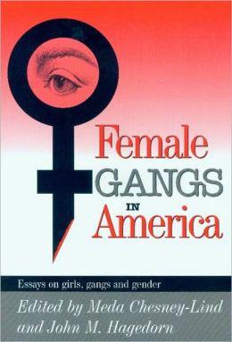Essays on gangs