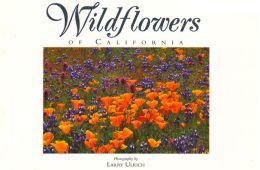 Wildflowers Of California: Twenty Postcards