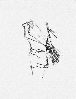 Brice Marden: Works on Paper 1964-2001