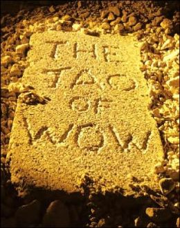 The Tao of Wow: Ancient Wisdom for Modern Success
