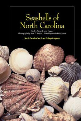 Seashells of North Carolina
