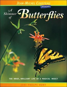 Shimmer of Butterflies: The Brief, Brilliant Life of a Magical Insect (London Town Wild Life Series)
