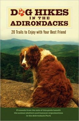 Dog Hikes in the Adirondacks: 20 Trails to Enjoy with Your Best Friend