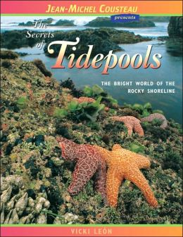 Secrets of Tidepools