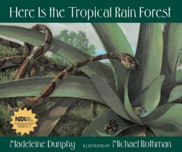 Here Is the Tropical Rain Forest