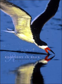Rhapsody in Blue: A Celebration of North American Waterbirds