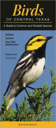 Birds of Central Texas: A Guide to Common and Notable Species
