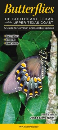 Butterflies of Southeast Texas and the Upper Texas Coast: A Guide to Common and Notable Species