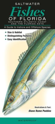Saltwater Fishes of Florida - Southern Atlantic Coast and the Florida Keys: A Guide to Inshore and Offshore Species