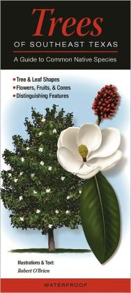 Trees of Southeast Texas: A Guide to Common Native Species