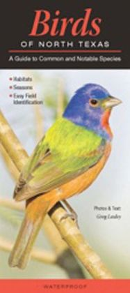 Birds of North Texas: A Guide to Common and Notable Species