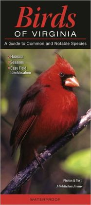 Birds of Virginia: A Guide to Common and Notable Species