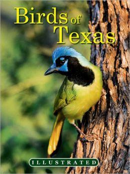 The Illustrated Birds of Texas