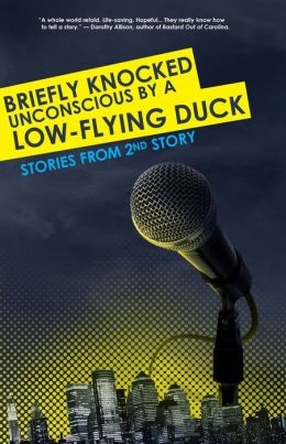 Briefly Knocked Unconscious by a Low-Flying Duck: Stories from 2nd Story