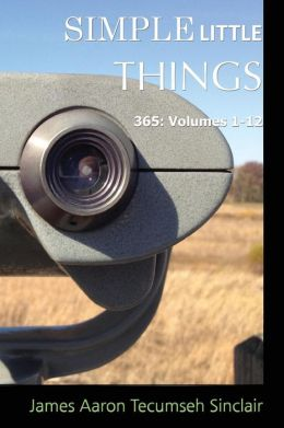 Simple Little Things: 365: Volumes 1-12