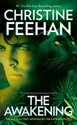 The Awakening (Leopard Series #1)