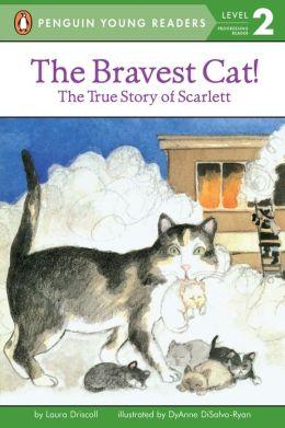 The Bravest Cat!
