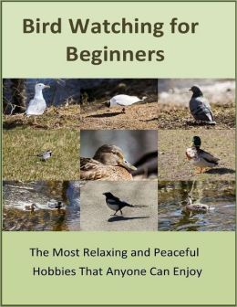 Bird Watching for Beginners: The Most Relaxing and Peaceful Hobbies That Anyone Can Enjoy