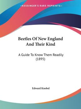 Beetles Of New England And Their Kind