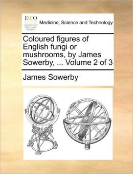 Coloured figures of English fungi or mushrooms, by James Sowerby, ... Volume 2 of 3