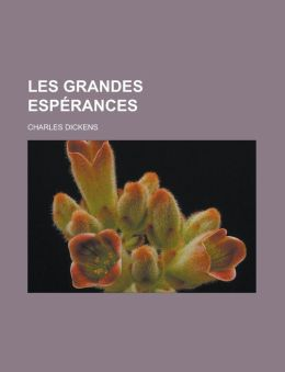 Les Grandes esp&eacuterances (French Edition) Charles Dickens