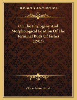 On The Phylogeny And Morphological Position Of The Terminal Buds Of Fishes (1903)