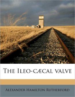 The Ileo-C Cal Valve