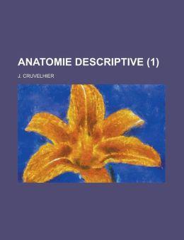 Anatomie Descriptive (1 )