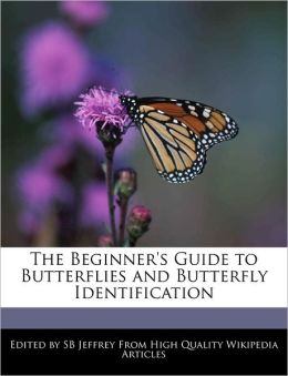 The Beginner's Guide to Butterflies and Butterfly Identification