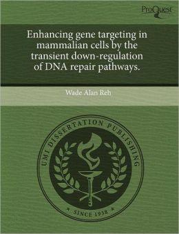 Enhancing Gene Targeting In Mammalian Cells By The Transient Down-Regulation Of Dna Repair Pathways.