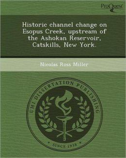 Historic channel change on Esopus Creek, upstream of the Ashokan Reservoir, Catskills, New York.