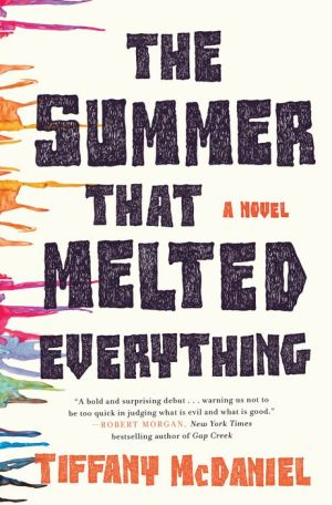 The Summer That Melted Everything: A Novel