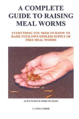 A Complete Guide to Raising Meal Worms: Everything You Need to Know to Raise Your Own Endless Supply of Free Meal Worms: Always Have Some on Hand